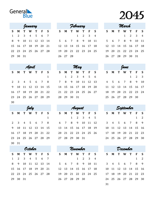 Image of 2045 2045 Calendar Cool and Funky