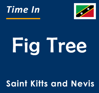 Current time in Fig Tree, Saint Kitts and Nevis