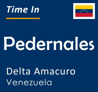 Current time in Pedernales, Delta Amacuro, Venezuela